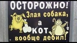 Лютые объявления. Мегаподборка с канала Макс Максимов. Осторожно злая собака, а кот вообще ДЕБИЛ !!!