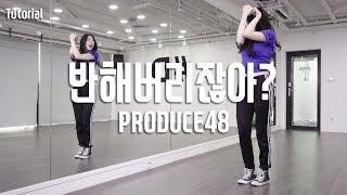 PRODUCE48 (프로듀스48) - YOU'RE IN LOVE, RIGHT? (반해버리잖아 / 好きになっちゃうだろう?) Dance Tutorial / HyeWon Cho (M)