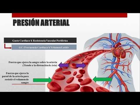 Etapa fisioterapia enfermedad hipertensiva 2