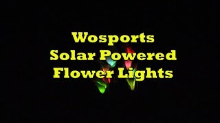 Product Demo - Wosports Solar Powered Flower Lights