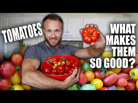 , title : 'Tomatoes Are AMAZING & Why You Should Eat Them 🍅