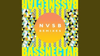 Mystery Song (Bassnectar Remix)