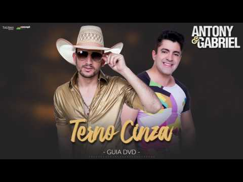 Música Terno Cinza (Letra)