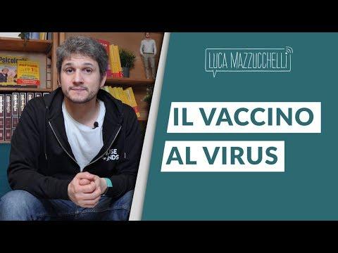 Papillomavirus impfung