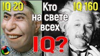 Кто на свете всех умнее? (Что общего у идиота и гения?) #IQ #гений #дебил
