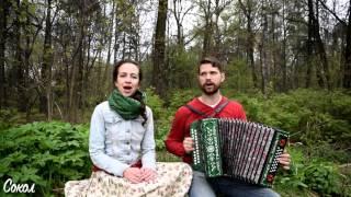 В саду при долине - Ансамбль Сокол - Степан и Валентина Нестеровы