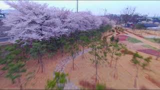 FPV Drone / Reptile CLOUD 149 Cinewhoop Practice / 시네후프 연습