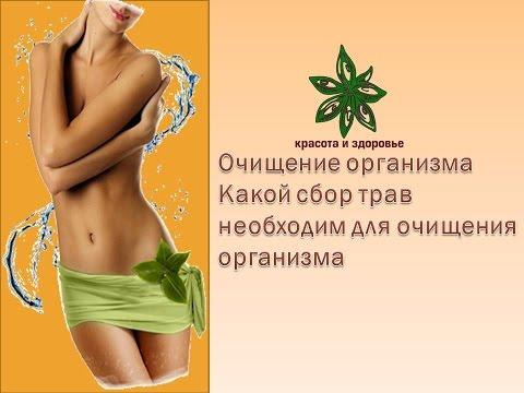 Травы для похудения печени