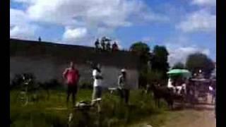 preview picture of video 'los arabos pelota,JUEGO DE BEISBOL EN LOS ARABOS'