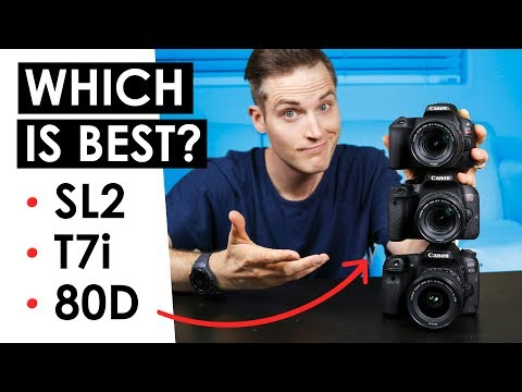 Best Canon DSLR for Video? — Canon SL2 VS. T7i VS. 80D