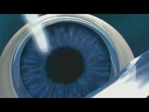 Fundamentele fiziologice ale vederii