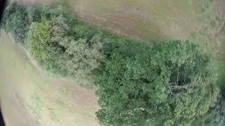 Caddx Orca FPV test flight (1080p 60fps EIS off)