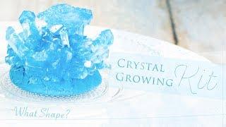 Whatshape?CrystalGrowingKit*どんな形ができるかお楽しみ♪クリスタル育成キット
