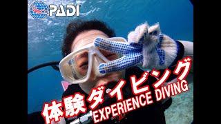 沖縄ダイビングライセンス フリースタイル