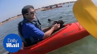 Kayakers Save Helpless Seal Pup Entangled In Netting In Namibia