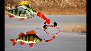 Ловля рыбы зимой на речке