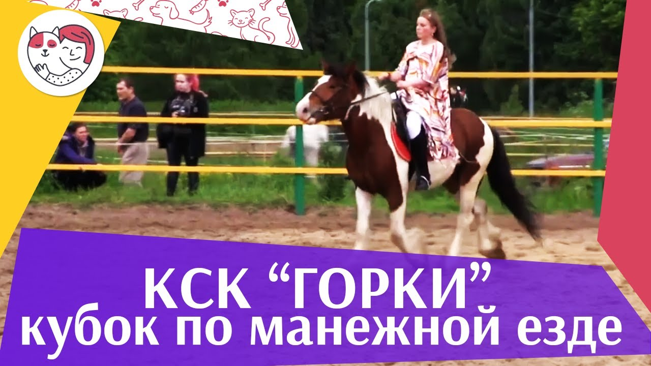 Летний  кубок  КСК Горки по  манежной езде КЮР часть 27 на ilikepet