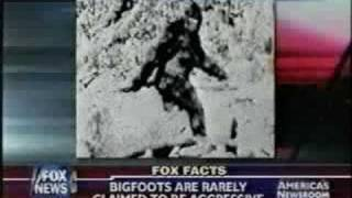 Georgia Men Claim To Have Found Dead Bigfoot
