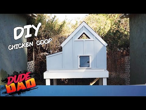 How To Build Ana White Chicken Coop | Dude Dad
