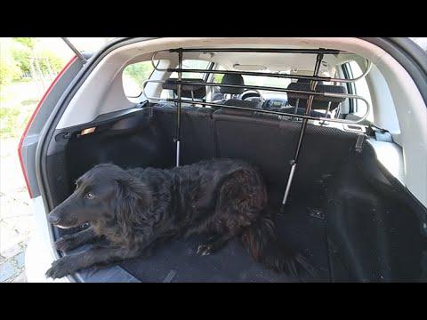 Hundegitter für Auto