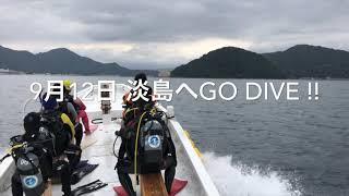 淡島ボートダイブ、好調!!