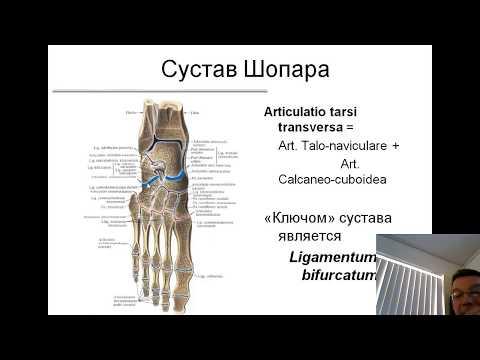 Articulațiile și mușchii sunt foarte dureroase