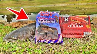 Best Catfish Bait Challenge! (Hotdogs VS Dough Bait!)