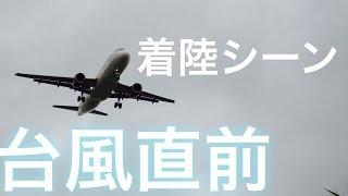 恐怖台風8号上陸前の飛行機着陸シーン沖縄那覇空港