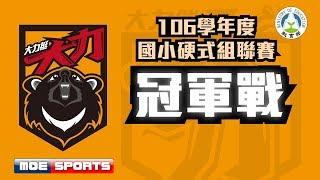 ::冠軍戰::桃園仁善vs桃園龜山::106學年度國小棒球硬式組聯賽 全國決賽