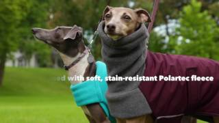 Our Best Rated Warm, Dry Winter Dog Jacket | DogCoats.com
