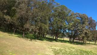 FPV - Flying 5 minutes in crazy trees - Iflight titan DC5 and GoPro Hero 8
