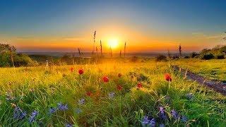 Бог всех солнцеедов МАЛАКИТАУС