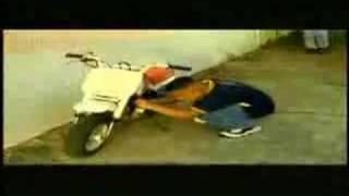 Video Vine A Matar de Baby Rasta y Gringo