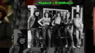 1972   Skylark   Wildflower