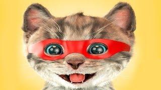 Приключение крошки котенка. Игра про самого милого котенка