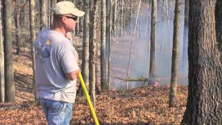 How To Perform A Prescribed Burn