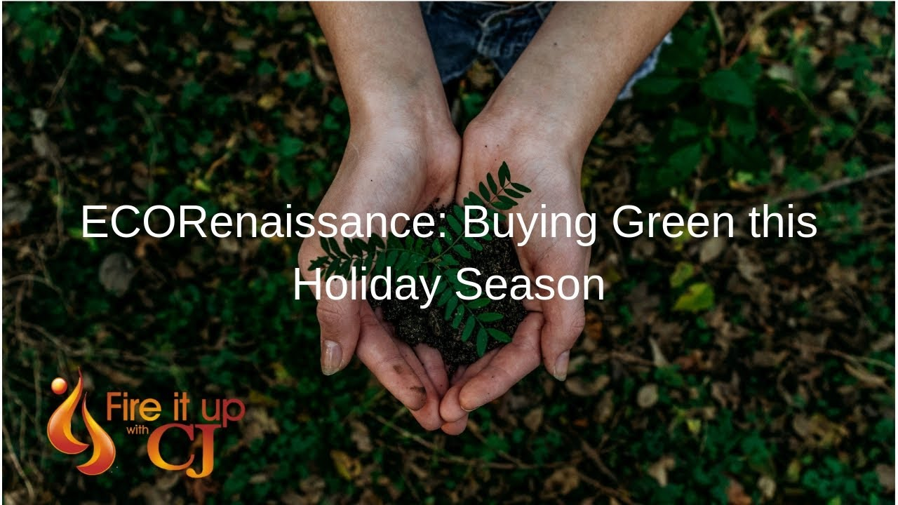 ECORenaissance: Buying Green this Holiday Season