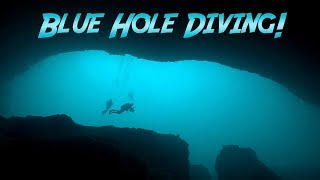 Blue Hole Diving In The Bahamas | JONATHAN BIRD'S BLUE WORLD