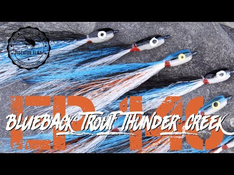 Blueback Trout Thunder Creek Minnow