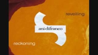 Ani Di Franco - Subdivision