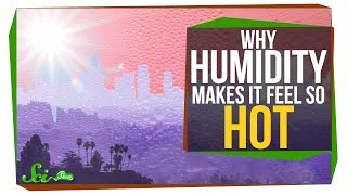 Why Does Humidity Make It Feel Hotter?