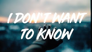 Sigrid | I Don't Want To Know  (lyrics)