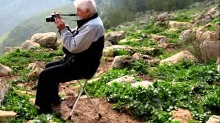 סיכום חוג צילום תשעה - ערכה רחל פאר