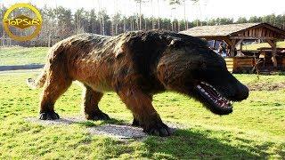 10 อันดับ สัตว์ดึกดำบรรพ์ที่คุณไม่คิดว่ามันจะมีอยู่จริงมาก่อน (ไม่น่าเชื่อ !!)