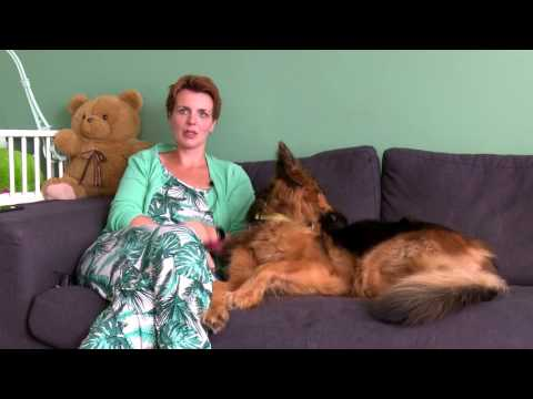 Helminth infections diagnosis and treatment