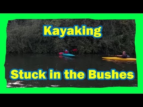 Kayaking - Help! I'm Stuck in the Bushes