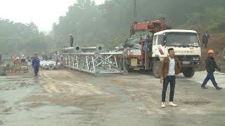 Tin Tức 24h: Chung quanh vụ đốn hạ cây tại huyện Thạch Thất, Hà Nội