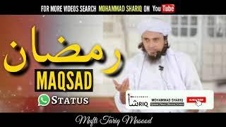 mufti tariq masood funny whatsapp status - Thủ thuật máy tính - Chia