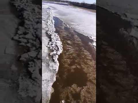 Daugavā pie Jēkabpils sakustējies ledus, intensīvu ledus iešanu prognozē šīs nedēļas nogalē (FOTO, VIDEO)