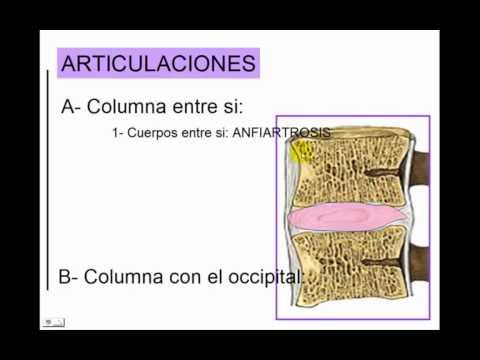 Molestias en la articulación del hombro